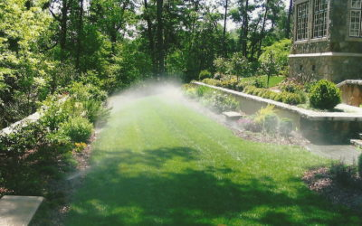 Methods of Irrigation for a Beautiful Yard