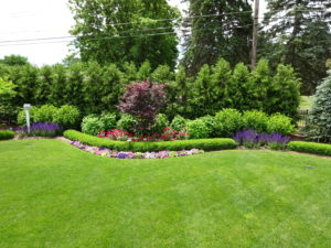 Irrigation for a Beautiful Yard