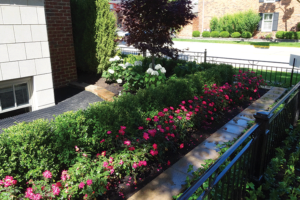 What You Should Know Before Hiring a Landscape Company